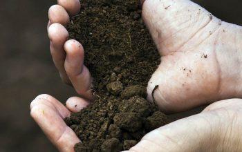 Soil Tank Guide